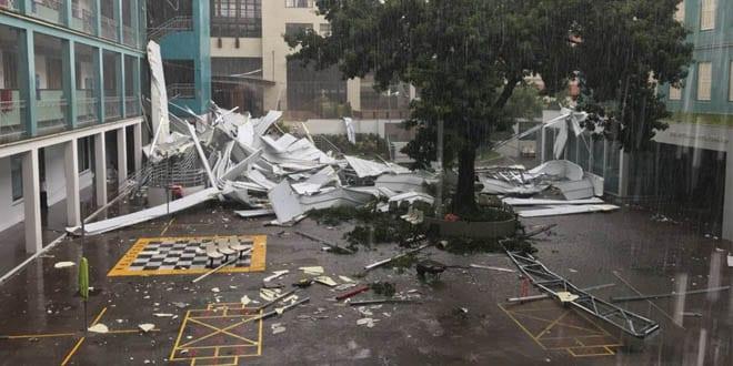 Temporal derruba árvores em Porto Alegre